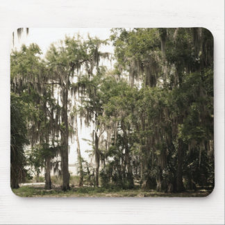 Florida in Sepia Mouse Pads