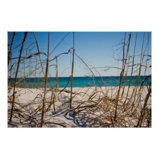 Florida in Winter - Beach front through the sand Posters