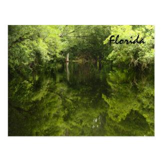 Florida inland water post card