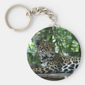 Florida Jaguar looking back lying down Basic Round Button Keychain