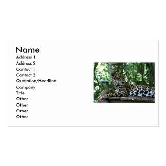 Florida Jaguar looking back lying down Business Card