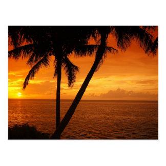 Florida Key s Sunset Postcards
