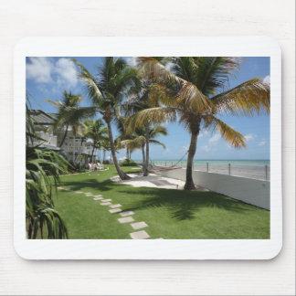 Florida Keys American Beach - ReasonerStore Mouse Pad