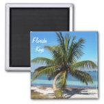 Florida Keys Bahia Honda State Park Palm Magnet