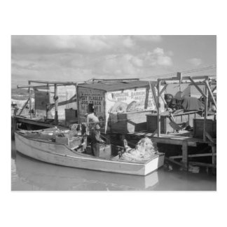 Florida Keys Fishing, 1938 Post Cards