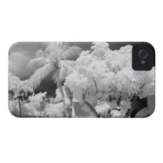 Florida Keys house and its palm trees, USA. 2 iPhone 4 Cover
