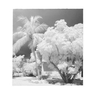 Florida Keys house and its palm trees, USA. 2 Memo Note Pad