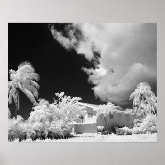 Florida Keys house and its palm trees, USA. Poster