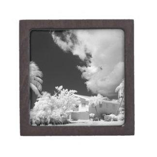 Florida Keys house and its palm trees, USA. Premium Trinket Boxes