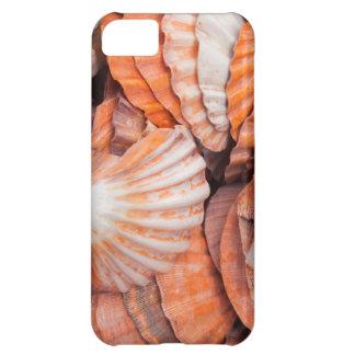 Florida Keys, Key West, seashells Case For iPhone 5C
