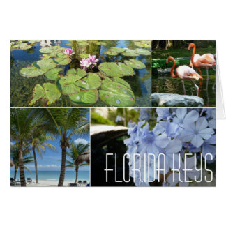 Florida Keys Notecard by Brad Hines