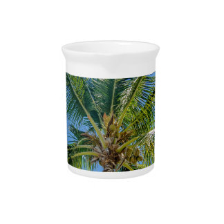 Florida Keys Pitchers
