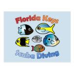 Florida Keys Scuba Diving Postcards