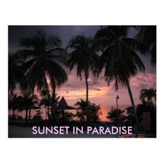 Florida Keys Sunset in Paradise postcard