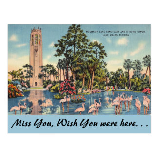Florida, Lake Wales, Bok Singing Tower Postcard
