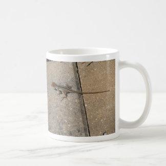 Florida Lizard Coffee Mugs