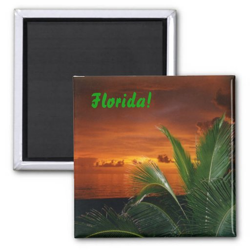 Florida! Magnets