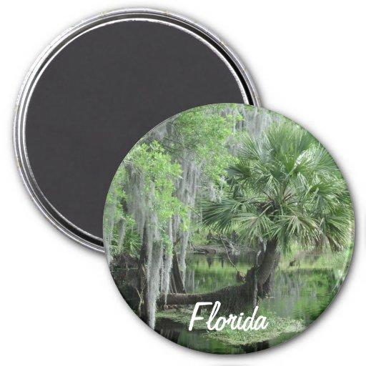 Florida Magnet ll