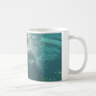 Florida Manatee mug