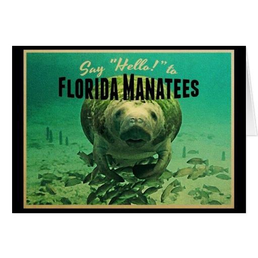 Florida Manatees Greeting Card