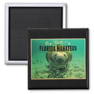 Florida Manatees Fridge Magnets