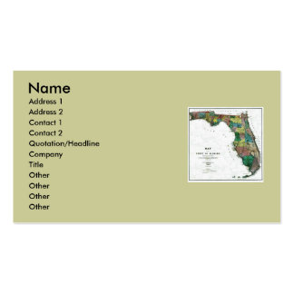 Florida Map and State Flag Double-Sided Standard Business Cards (Pack Of 100)