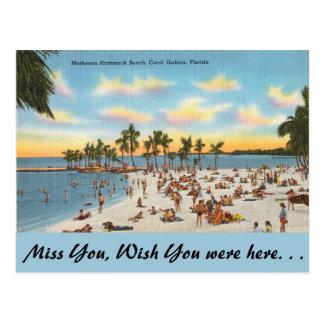 Florida, Matheson Hammock, Coral Gables Postcard