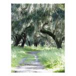 Florida Oak Letterhead