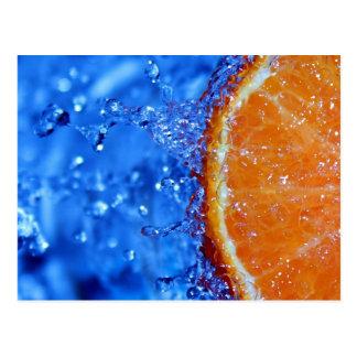 Florida Orange Splash Postcard