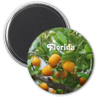 Florida Oranges Fridge Magnet