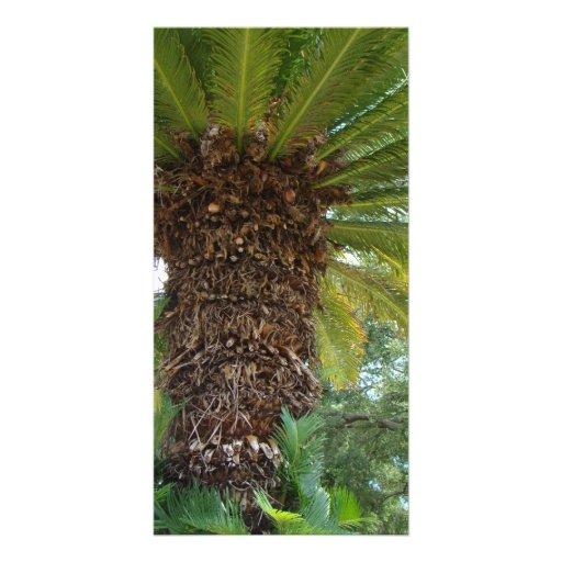 Florida Palm Personalized Photo Card