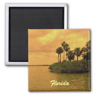 Florida Palm Tree Reverie Magnet