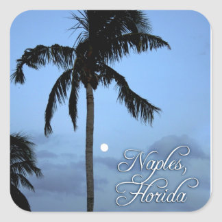 Florida Palm Tree Square Sticker