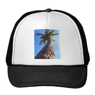 Florida Palm Tree Trucker Hat