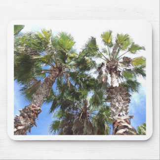 Florida Palms Mouse Pad