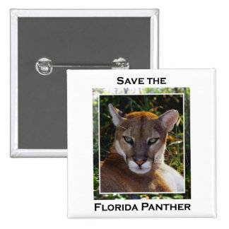 Florida Panther 2 Inch Square Button
