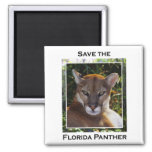 Florida Panther 2 Inch Square Magnet