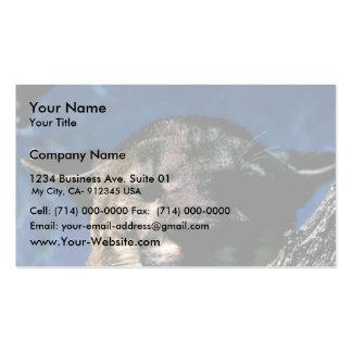 Florida Panther Business Card