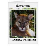 Florida Panther Cards