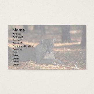 "Florida """"""""Panther"""""""" (Cougar) lying down Business Card"
