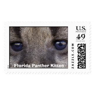 Florida Panther Kitten Postage