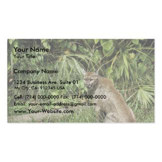 Florida Panther National Wildlife Refuge Business Card Templates