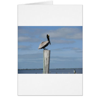 Florida Pelican on a Post at the Dock Greeting Card