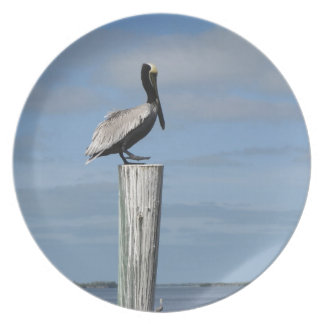 Florida Pelican on a Post at the Dock Dinner Plate