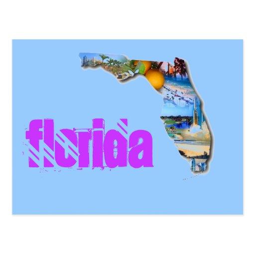 FLORIDA PICTURE DESIGN POSTCARDS