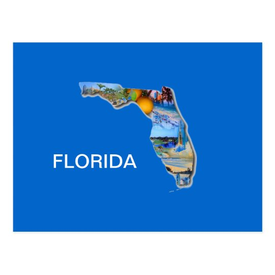 FLORIDA PICTURE DESIGN POSTCARD