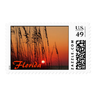 Florida Postage Stamp
