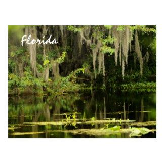 Florida Post Cards