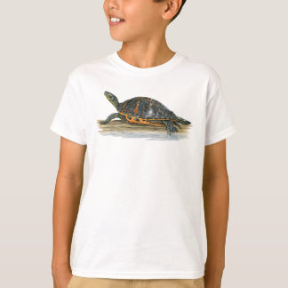 Florida Red-bellied Turtle T-shirt