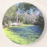 Florida River Wilderness Beverage Coasters